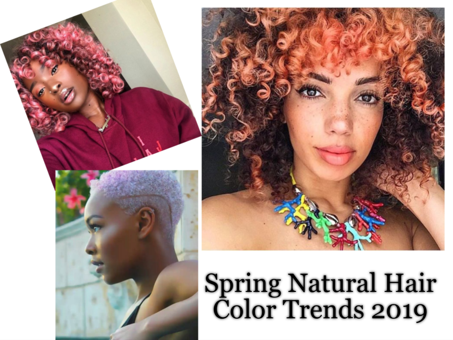 Spring Natural Hair Color Trends 2019 – Natural Hair For Beginners