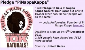 Natural Hair Sorority