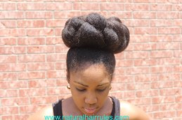 Front View of Bun