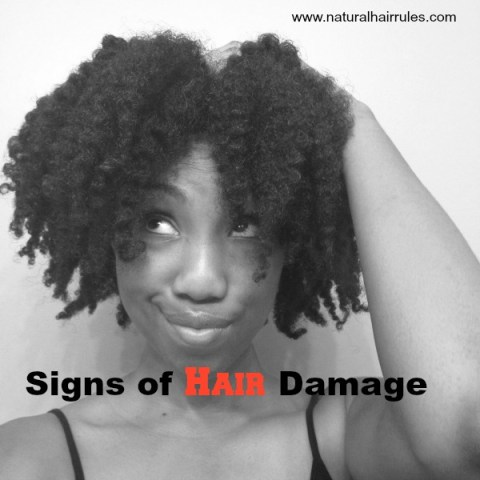 3 Major Types of Hair Damage and How to Prevent Them