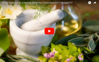 WHAT HAPPENS IN A HERBAL MEDICINE CONSULTATION