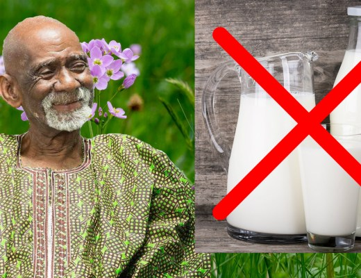Milk Dr Sebi