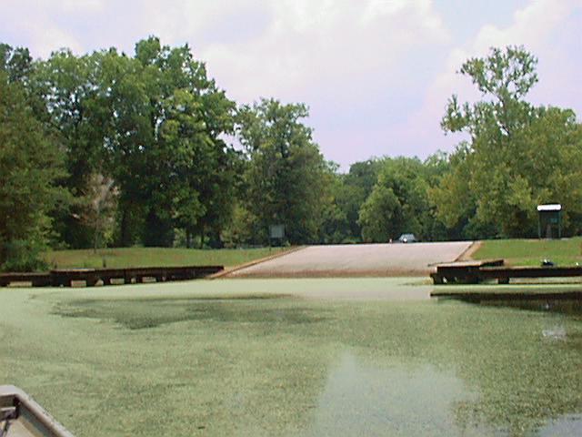 Spring Bayou Wma Map Louisiana