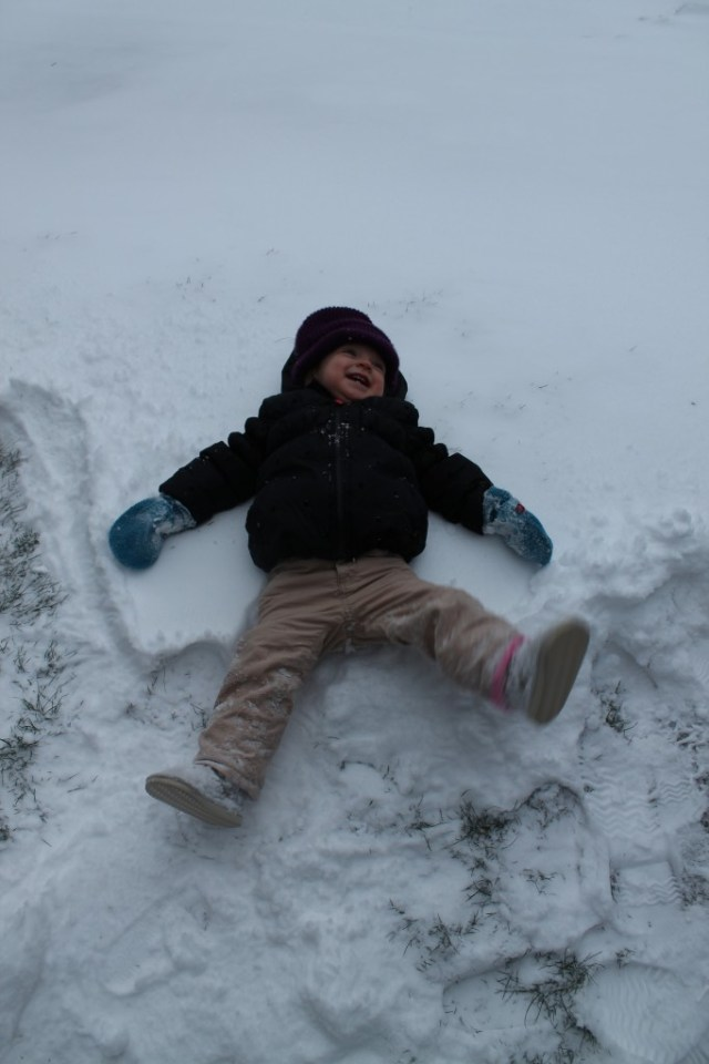 snowday angel e