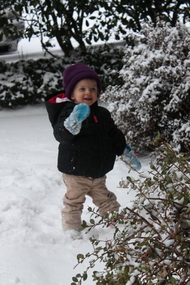 snowday- edith
