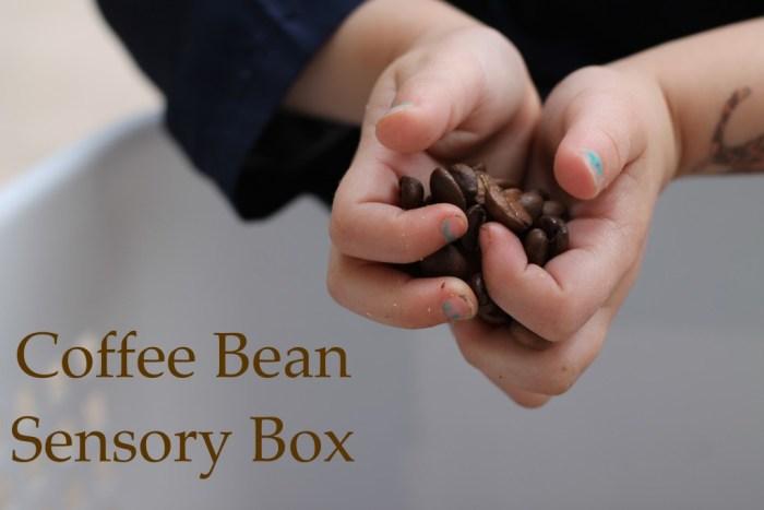 sensory box - coffee beans -