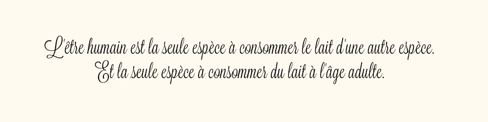 citation lait
