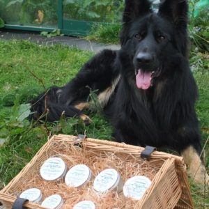 Dubby Dog Paw & Nose Balm in basket