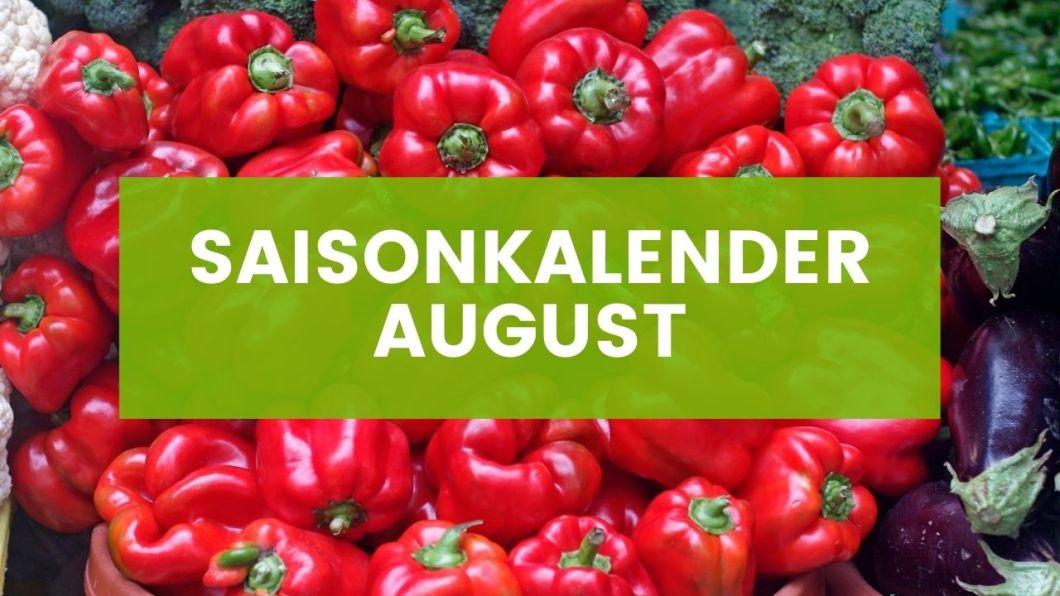 Saisonkalender August
