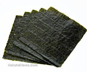 Nori-Sheets-Sushi-Seaweed.jpg