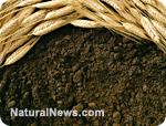 https://i2.wp.com/www.naturalnews.com/gallery/photoscom/soil.jpg
