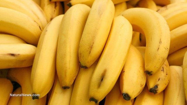 Image: Do not toss: Overripe bananas may be effective against cancer cells, finds scientific study