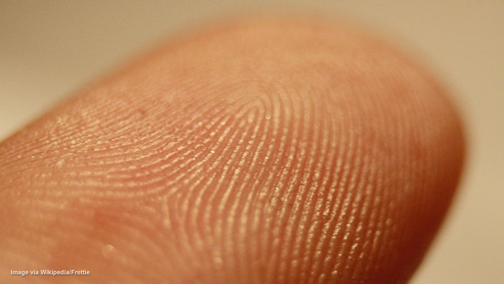 Image: Identity theft using selfies: Your fingerprint can now be stolen from your pictures