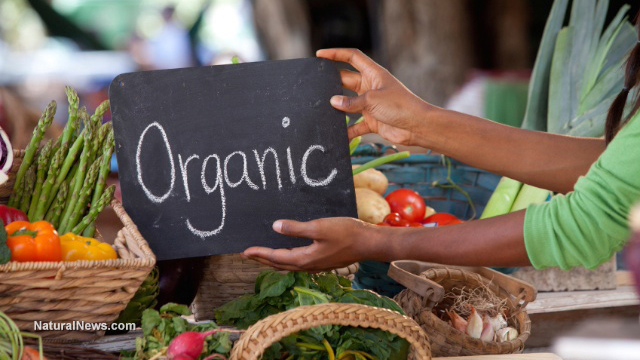 Image: 82% of households are now purchasing organic items