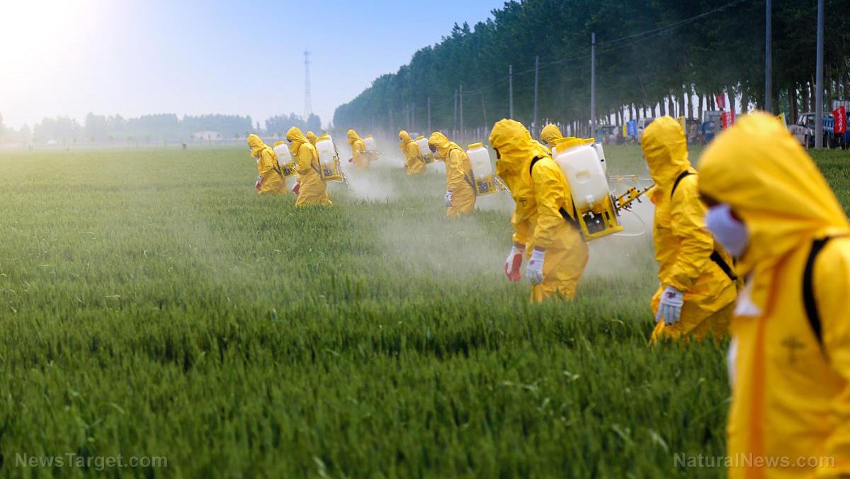 Image result for glyphosate farming mask