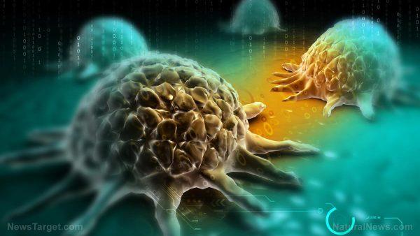 圖像:化療發現能夠激活身體的癌症腫瘤生長機制,遍及各地的癌症,通常會對患者造成傷害