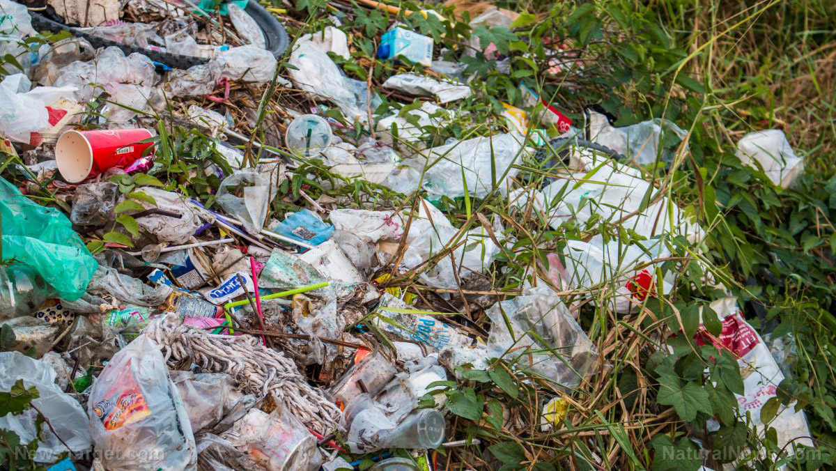 Image: Humans have already manufactured 8.3 billion tons of plastic with no end in sight… landfill galore