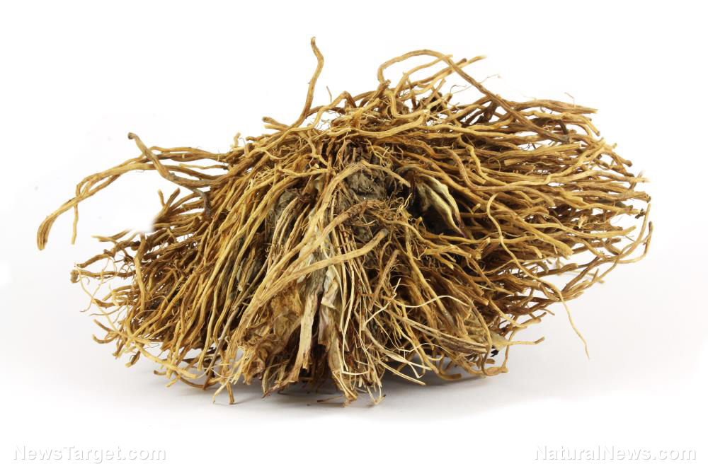 """Image: The """"root"""" of your problems: How valerian root can help with anxiety and sleep"""