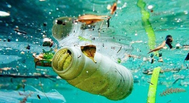 Plástico que flota en el mar libera compuestos que estimula el desarrollo de bacterias