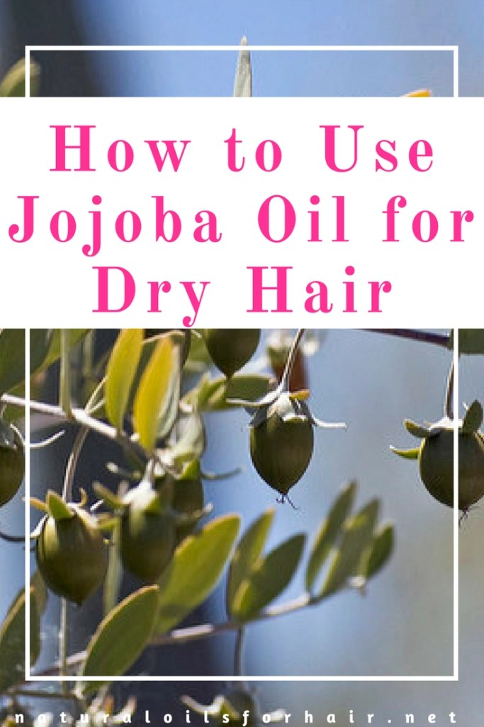 How to Use Jojoba Oil for Dry Hair