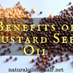 Benefits of Mustard Seed Oil