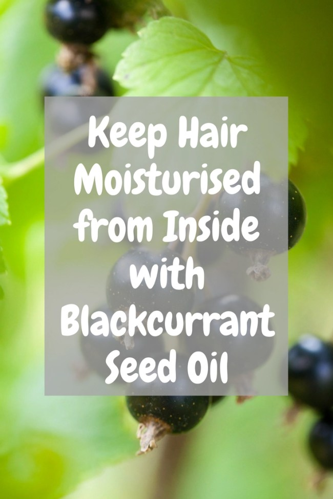 Keep Hair Moisturised from Inside with Blackcurrant Seed Oil
