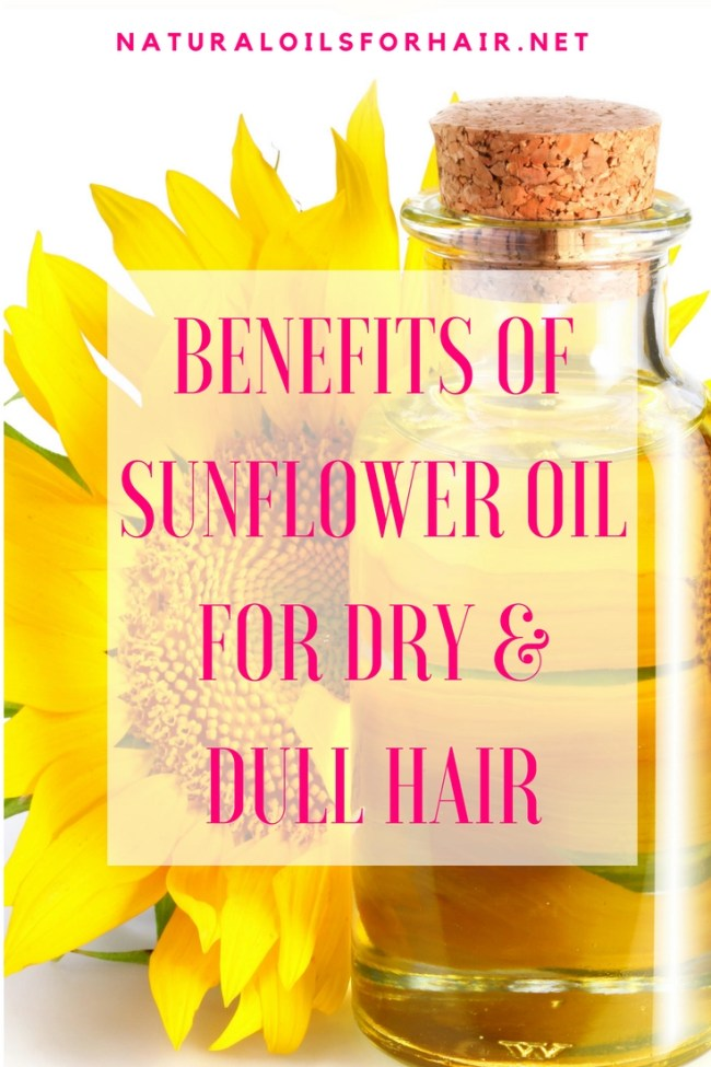 Benefits of sunflower oil for dry and dull hair