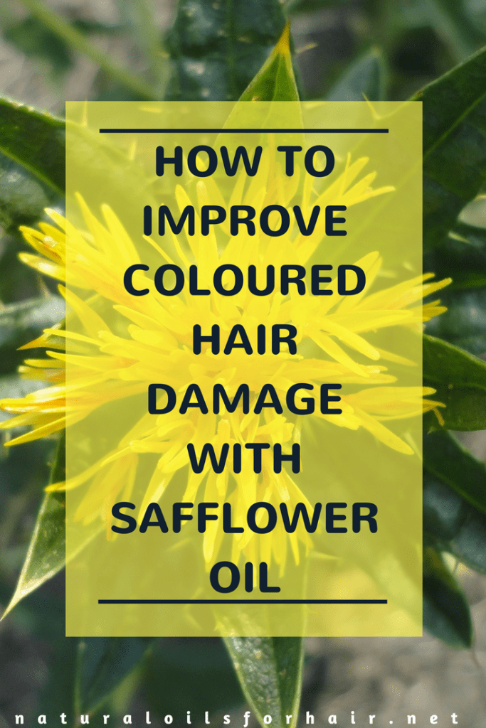 Improve the look of hair damaged by colour with these safflower oil tips