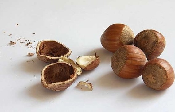 is hazelnut oil good for your hair