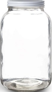Pakkon Wide Mouth Glass Mason Jar