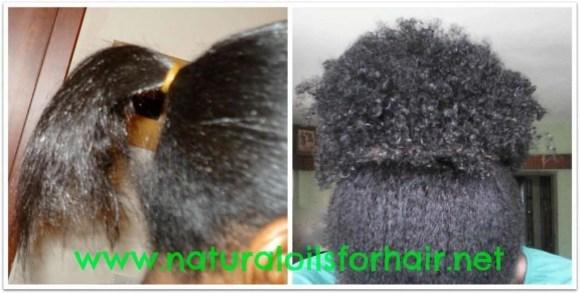 grow hair healthy and long ebook