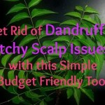 Get Rid of Dandruff & Itchy Scalp Issues with this Simple Budget Friendly Tool