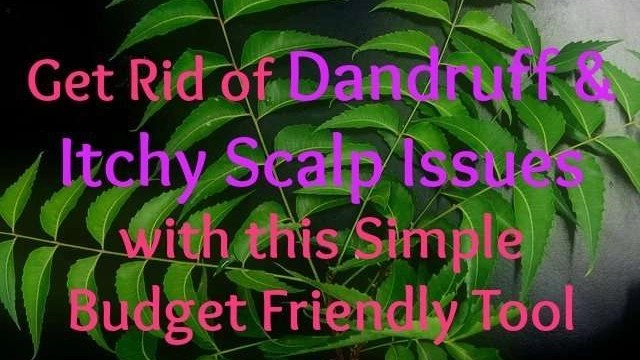 get-rid-of-dandruff-and-itchy-scalp-issues