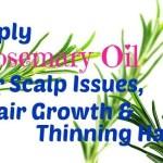 Apply Rosemary Oil for Scalp Issues, Hair Growth & Thinning Hair