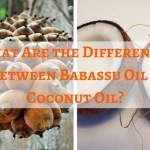 What Are the Differences Between Babassu Oil & Coconut Oil