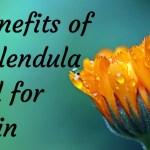 8 Benefits of Calendula Oil for Skin