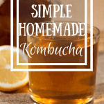 Homemade kombucha has such great bacteria in it for healing leaky gut, but it's so expensive... Not when you make it at home, y'all can seriously make it for PENNIES! And so tasty, take my word for it!