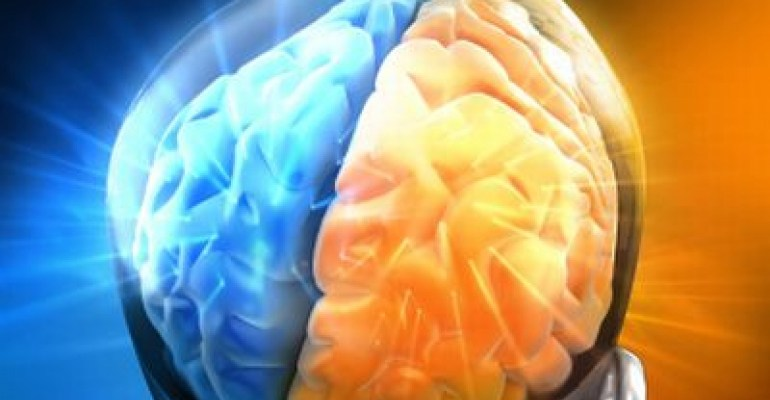 Mainting Brain Health and Cognitive Function with Minerals