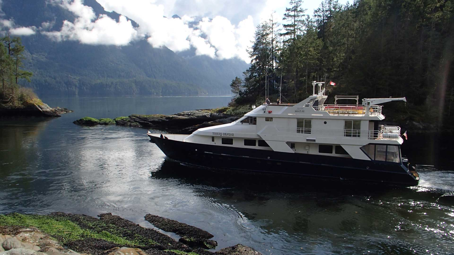 Whales Of Canadas Inside Passage Natural World Safaris