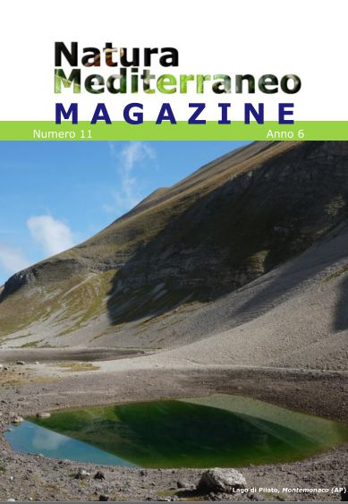 Natura Mediterraneo Magazine 11