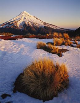 New Zealand's mountain ranges could lose up to 85% of their glaciers by 2100. Rob Brown/Minden Pictures/FLPA