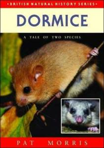 The life of a dormouse is explained in easy to understand text