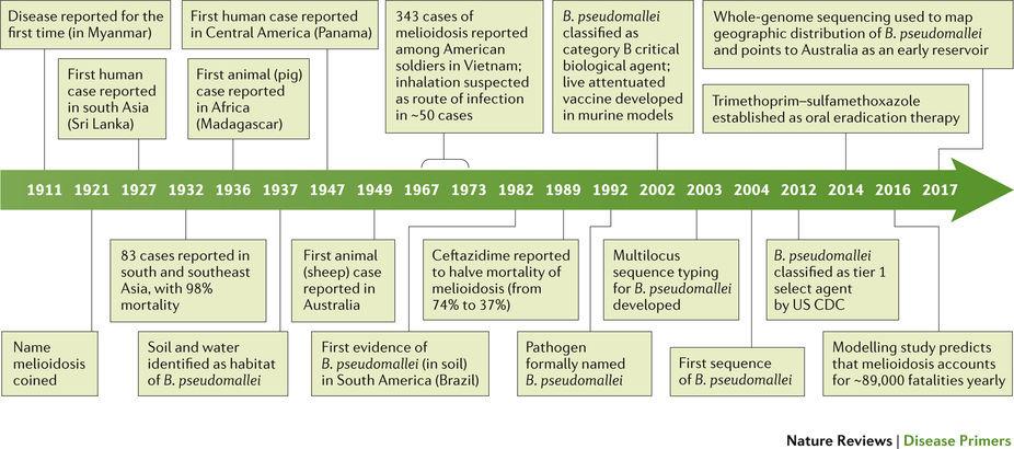 最新のPrimer:類鼻疽 | Nature Reviews Disease Primers | Nature Research
