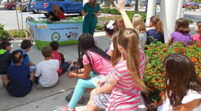 Pasco County schoolchildren learn about local government