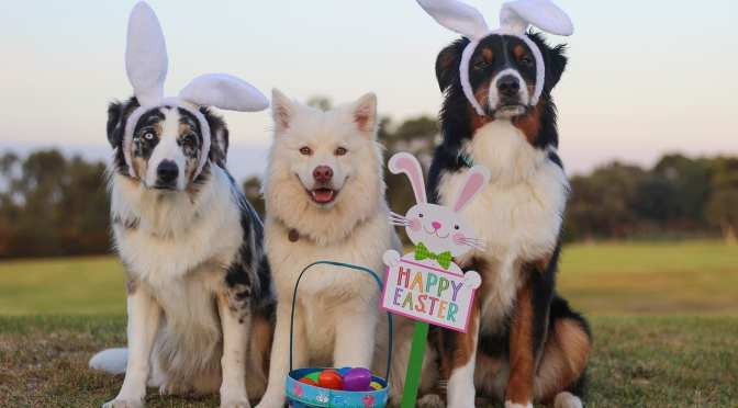 Easter Celebrations in the Nature Coast