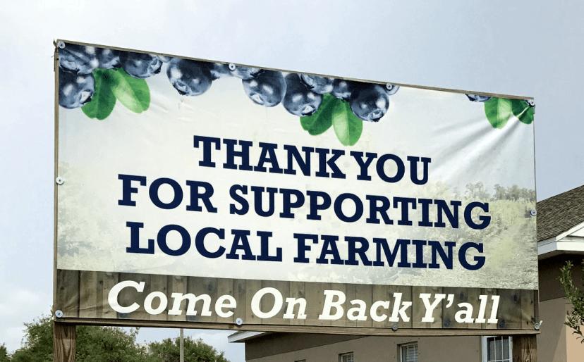 U-Pick Blueberry farm sign