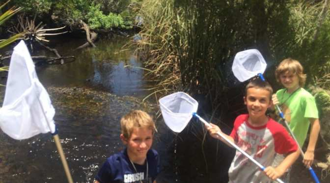 Summer Camp at Crystal River Preserve State Park