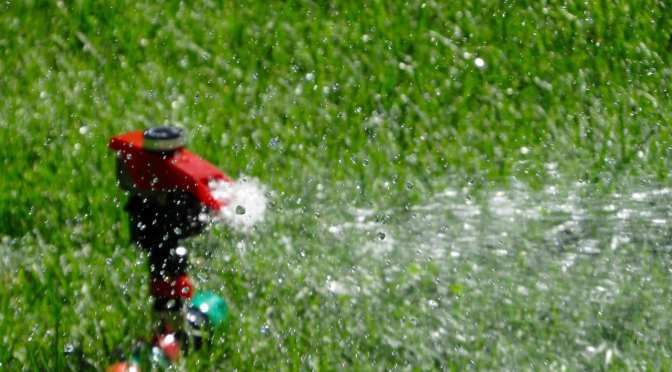 SWFTWMD Votes to Continue Once-per-Week Watering Restrictions
