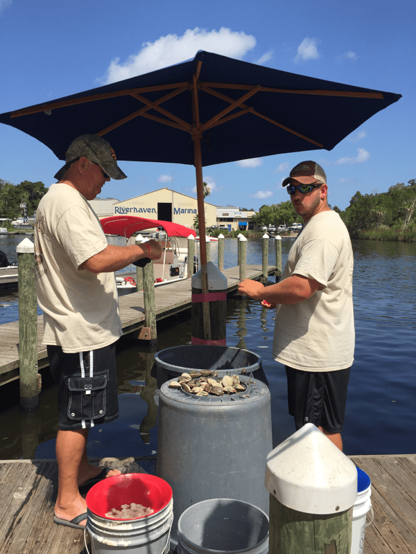 localboys scallop cleaners in homosassa