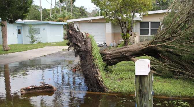 Hurricane Irma Debris Removal begins Sept. 18 – Pasco